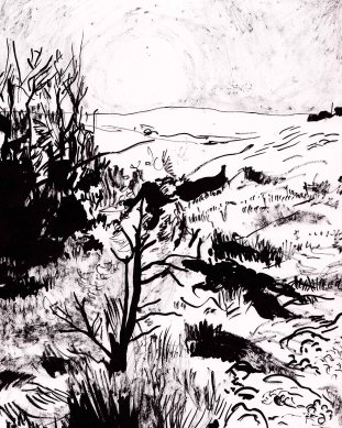 owlstation_wilmington sketch_2016_sunset ink